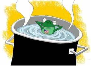 The Left is boiling 50 frogs. It's time for 30 states to jump out